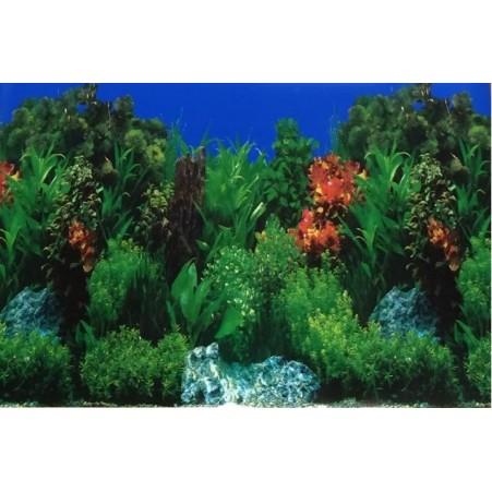 poster de fond d'aquarium 60 cm