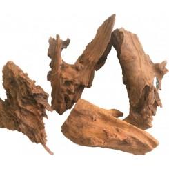 Racine Mangrove 25 à 30 cm
