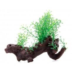 Plante sur racine arificielle