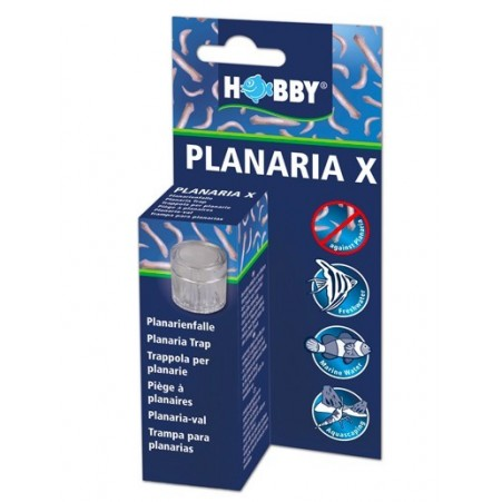 Piège à planaire Planaria X HOBBY