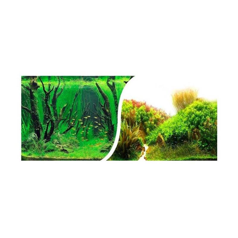poster de fond d'aquarium motif plantation 50 cm