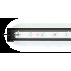 Réglette Juwel HeliaLux spectrum 80 cm