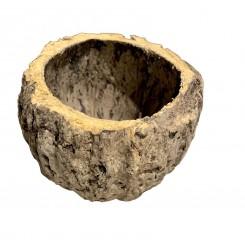 Demi noix de coco pod