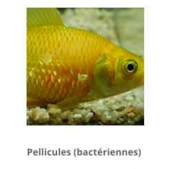 Aquarium munster Medimor 30 ml