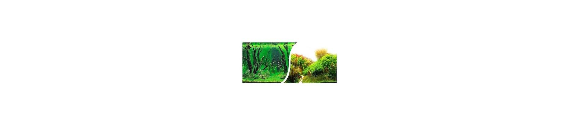 Poster de fond d'aquarium