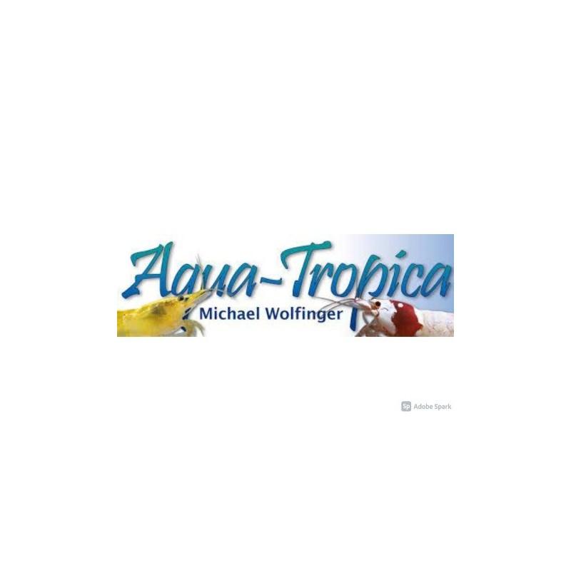 Dr Shrimps, Refugium et Aquatropica