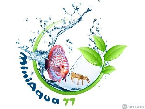 Miniaqua77
