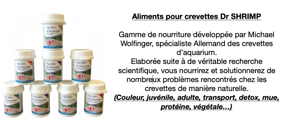 Alimentation Dr Shrimp
